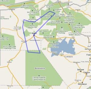 13 Day Best of Botswana Fly in Safari