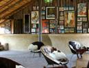 Planet Baobab lounge