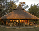 Camp Moremi huts