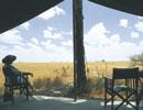 Jacks Camp view