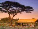 Chobe Under Canvas sunset