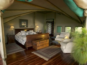 Abu Camp bedroom