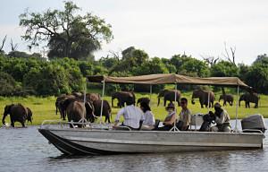 Chobe boat trip