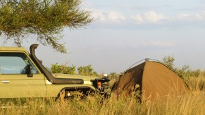 Botswana self Drive safari