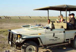 Chobe Safari Lodge game drive