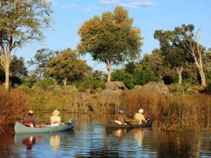 Canoeing with Elephants