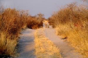 Botswana to Namibia