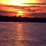 zambezi-cruise