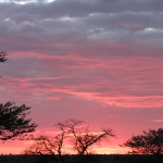 Sunsets Chobe