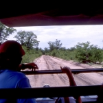 view-from-safari-vehicles
