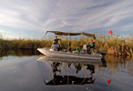 Camp Okavango boat rides